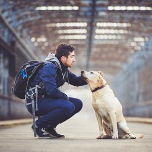 Pet Valu's Pet Appreciation Month