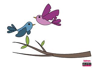 pájaros.png
