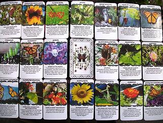 3 Card Reading (Body, Mind, Soul)