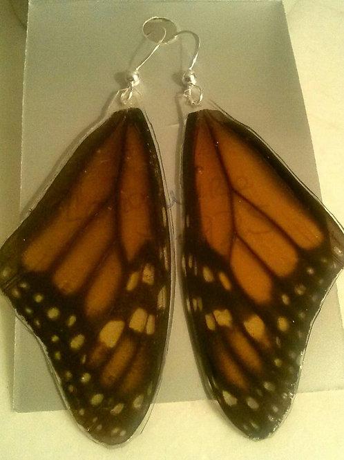 Monarch Top Wings