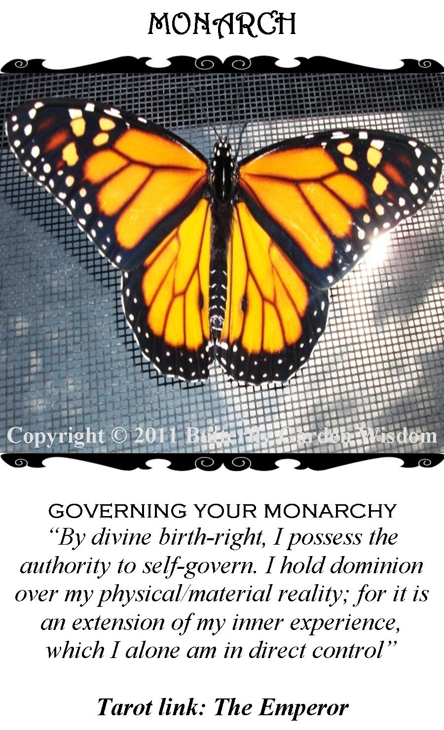 Monarch/The Emperor (Tarot Link)