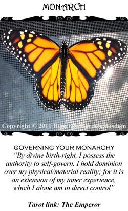 Monarch/The Emperor (Tarot Link)