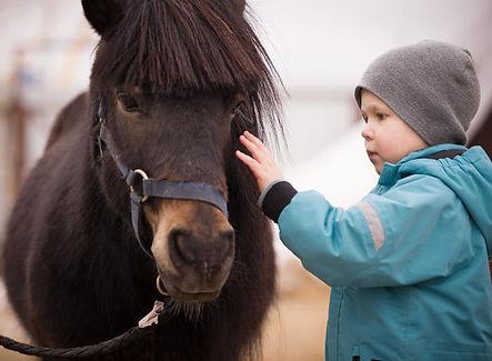 baby-poney-sport-bébé.jpeg