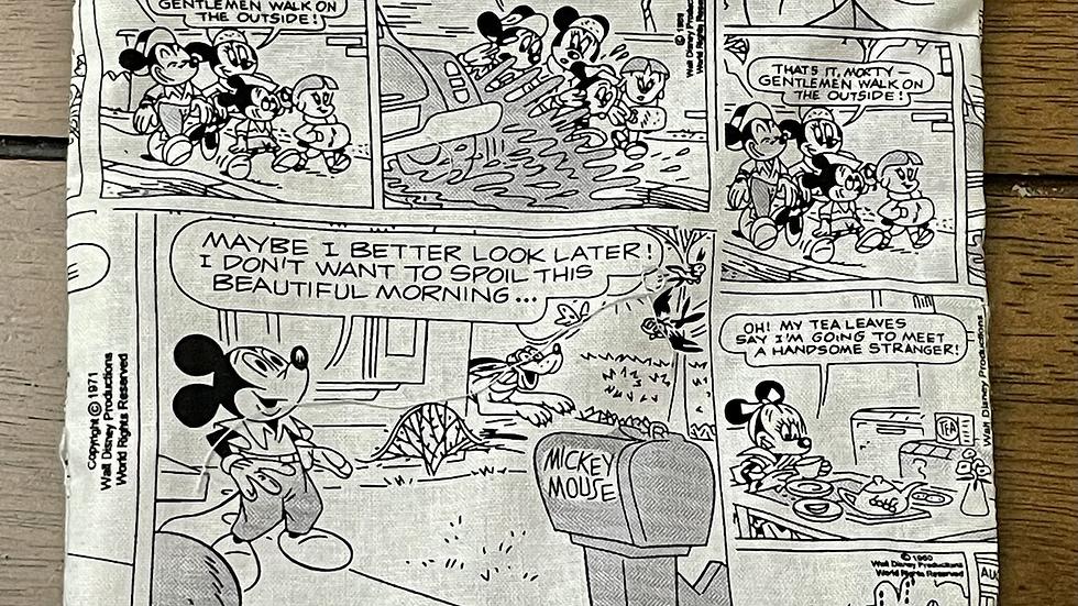 Retro Mickey and Minnie Comic Zipper Pouch