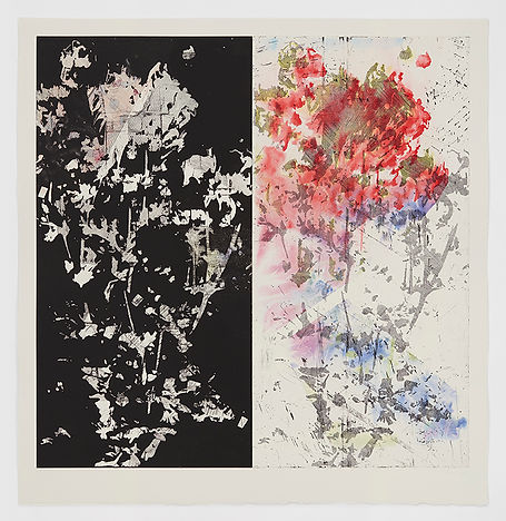Bevan_de_Wet,_2018._New_Reflections_on_Commonality_I,_etching_with_chine_collé,_113x108cm_copy.jpg