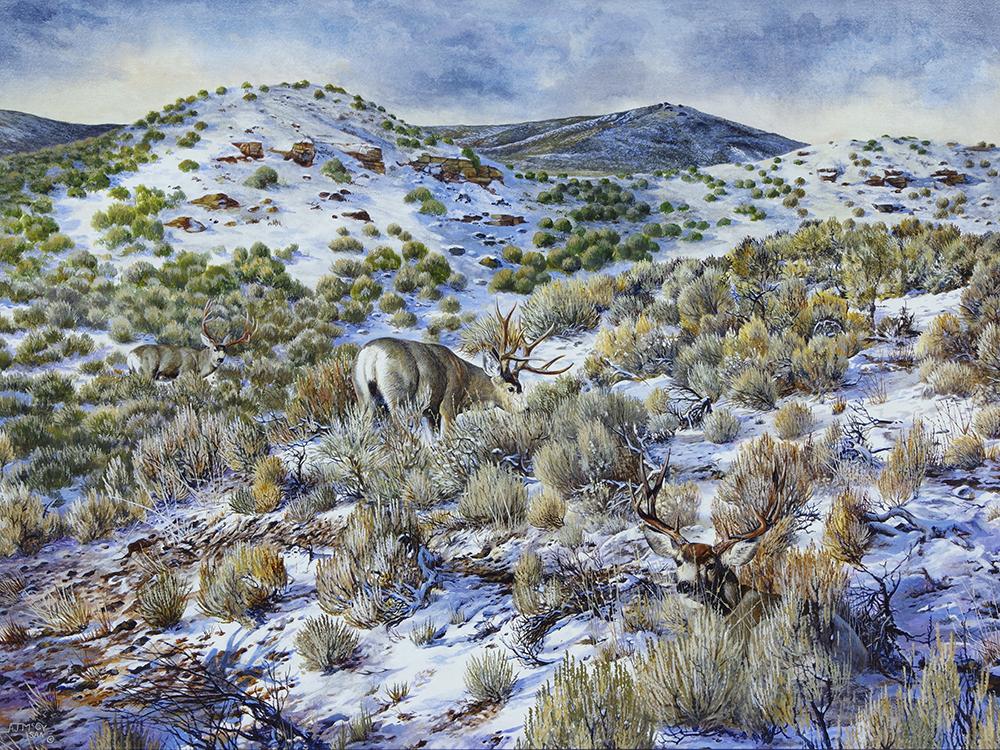 """""""First Snow & Mule Deer"""""""