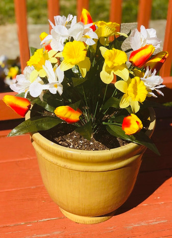 Potted Home Decor 03