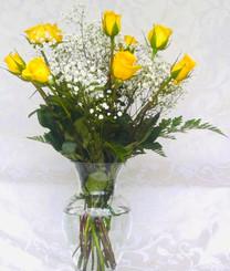 Yellow Roses 01