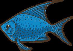 Exotic Fish 2.png