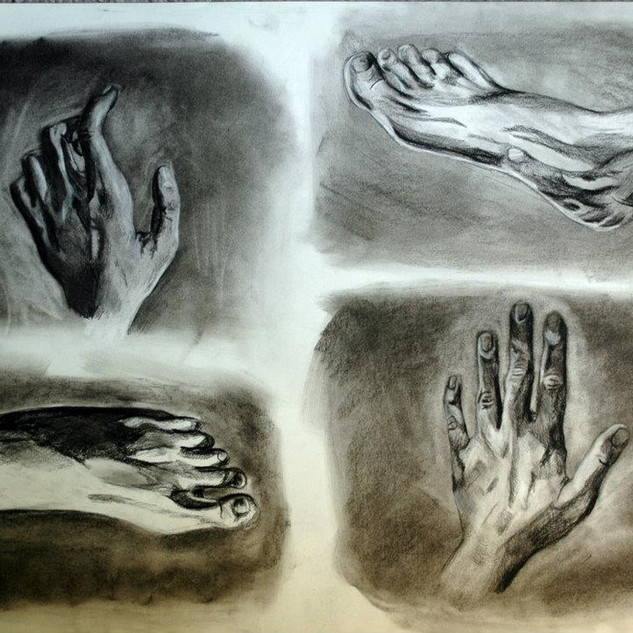 Hands and Feet Study 2012