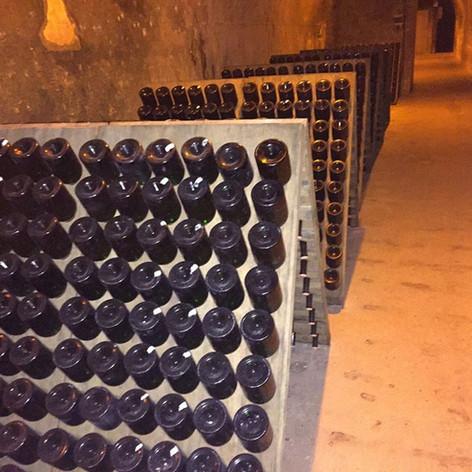 Krug cellars.jpg