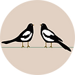 Two Magpies.png