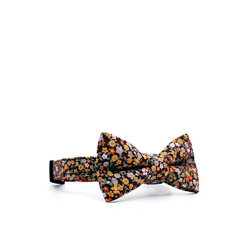 AMBER DITSY WEEKEND BOY BOW PET COLLAR