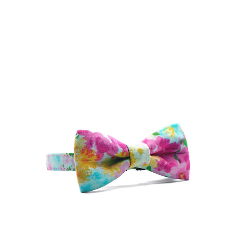 ROSE AFFAIRS WEEKEND BOY BOW TIE CAT COLLAR
