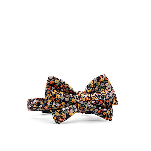 AMBER DITSY WEEKEND GIRL BOW TIE PET COLLAR
