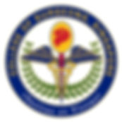 CSS logo (high reso).jpg