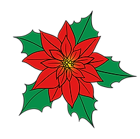 FAVPNG_poinsettia-flower-drawings-illust