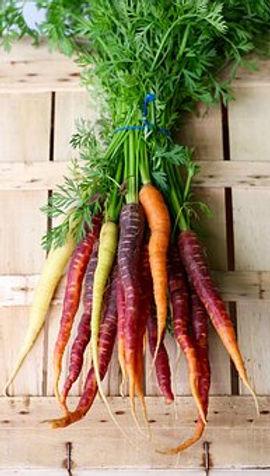carrots-2608611__340.jpg