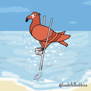 Flamingo Coosplay