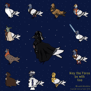 May the Force be with Coo