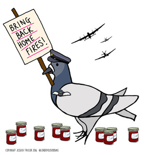 #savehomefires an Epic Journey