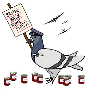 Save Home Fires RAF Pigeon Illustration Copyright Jessica Taylor 2016