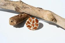 Nature's Finest - Giraffe Ring