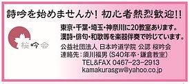 桜吟会.jpg