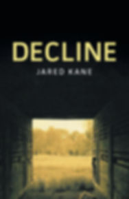Cover of Decline