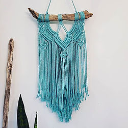 Macrame Wall Hanging, driftwood, colored cotto, snakeplant