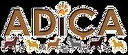 adica_logo.png