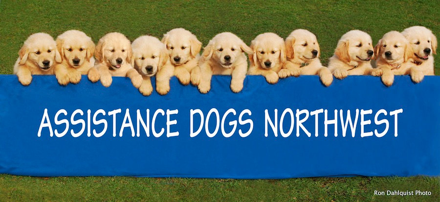 ADNW-Puppy-Banner-resized-for-email-copy