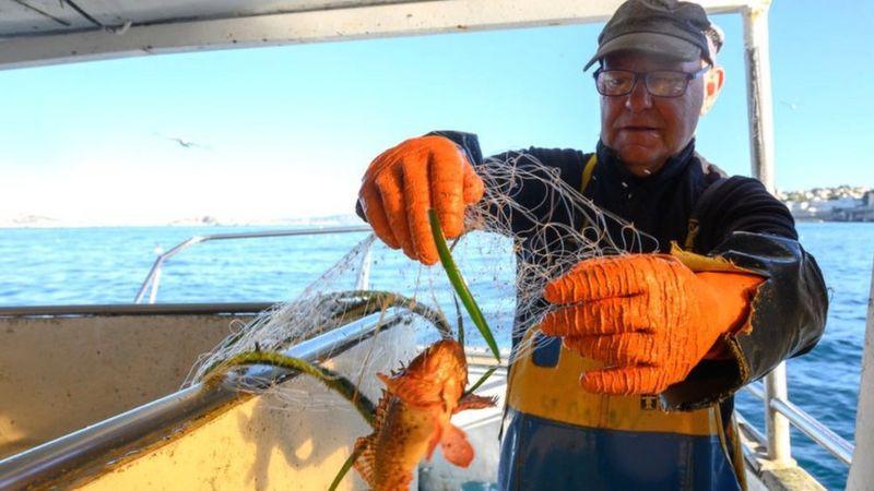 法国渔民到英国水域捕鱼,从明年1月1日起就有新的规定,但目前英国和欧盟还没有谈成协议