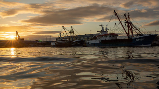 图为英国政府指定的捕鱼港口之一滨海肖勒姆。(图片来源:新华社)