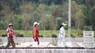 中国中西部22个省市832个贫困县全部脱贫摘帽