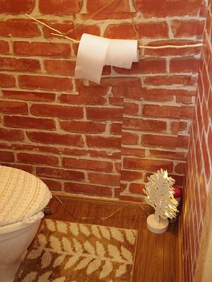 トイレは今どき珍しい「ボットン」タイプ。びっくりしないでね。