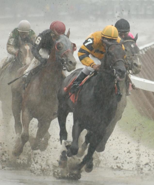 """""""Rainy Day Win"""""""