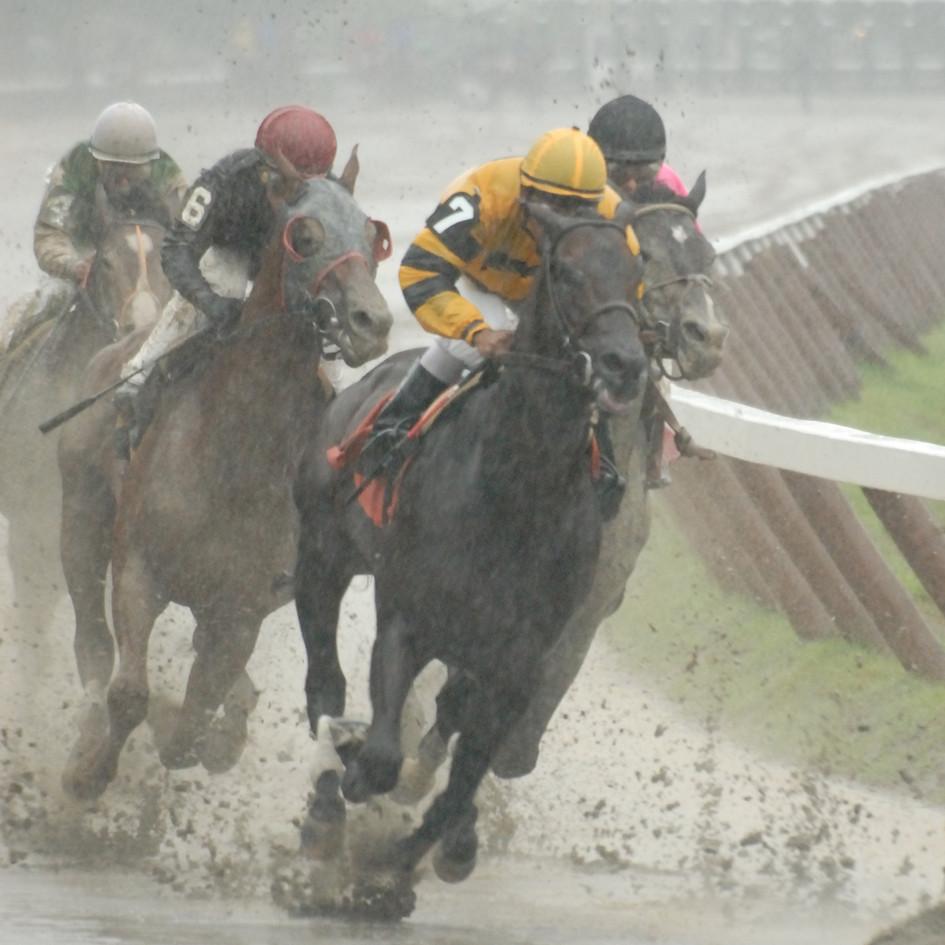 rainy day win.jpg