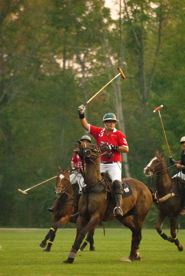 """""""Polo Victory"""""""