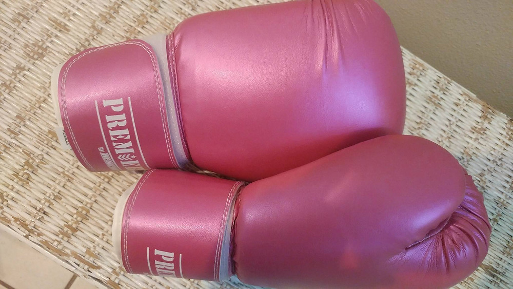 PInk Cupcake Princess Shiny Boxing Gloves