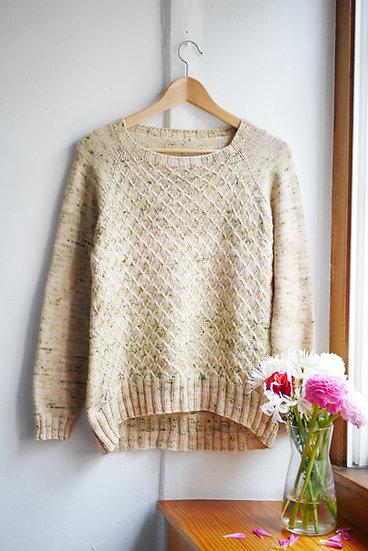 jersey Paquita