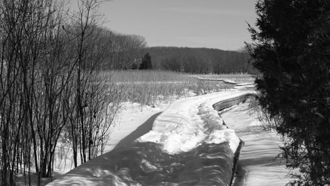 Snow Trail