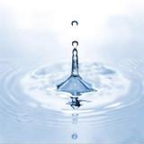 L'or bleu ou comment économiser l'eau