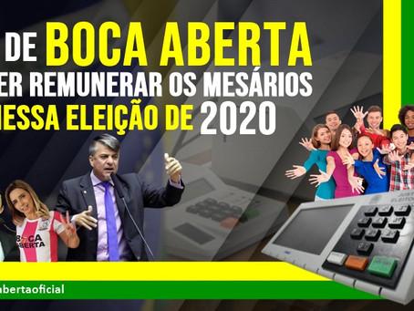 Lei de Boca Aberta quer remunerar os mesários já nessa eleição