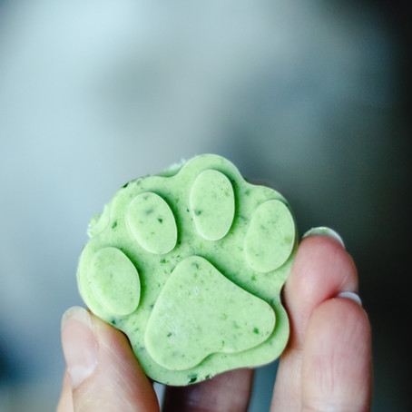 APPLE MINT FROZEN DOG TREATS