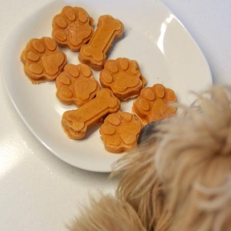 Frozen Yogurt Pumpkin Bites