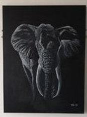 MIDNIGHT ELEPHANT
