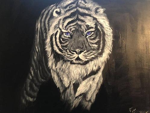 MIDNIGHT WHITE TIGER