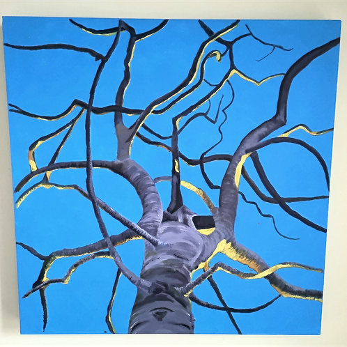 Blue: Hope. The trees are bare but the sky is ours