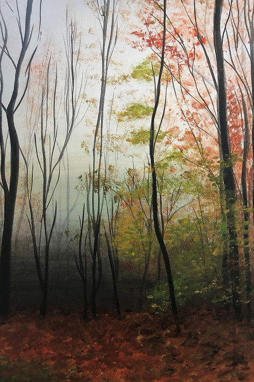 Urban wildwood - Suzette Burrows